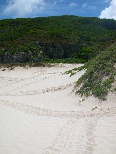 14-扇池の砂浜で